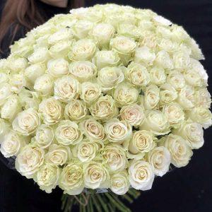 букет 101 белая роза в Бердянске