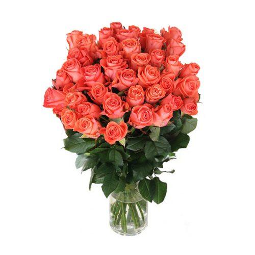 51 роза Вау фото