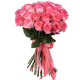 розы 33 джумилии фото