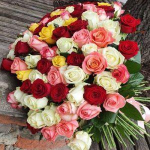 101 роза бердянск