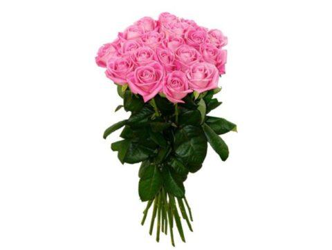 21 роза аква фото