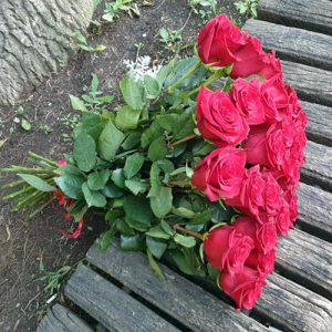 Букет 21 красная роза в Бердянске фото