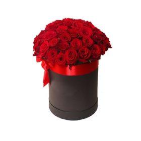 33 розы с доставкой в Бердянске