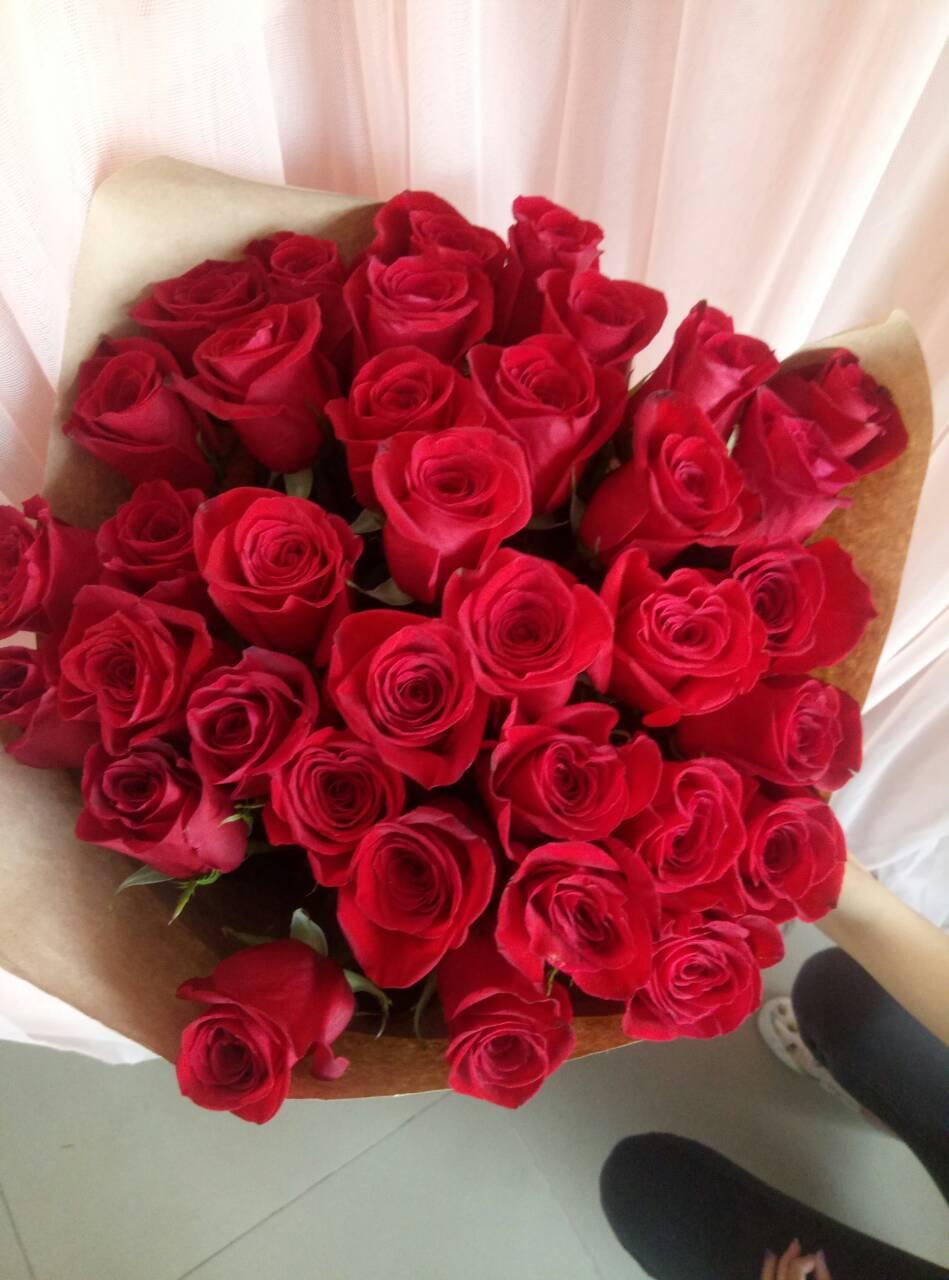 красные розы букет фото