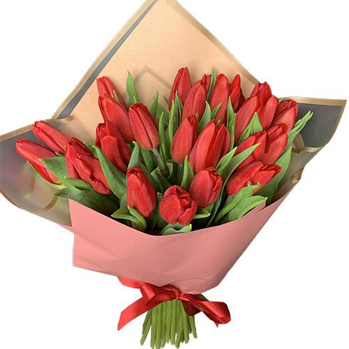 25 красных тюльпанов фото