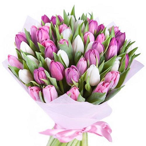 букет 49 тюльпанов белых и розовых