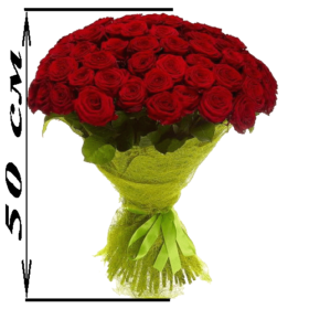 101 красная роза акция
