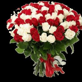101 красная и белая роза акция