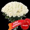 фото 51 белая роза (50 см)