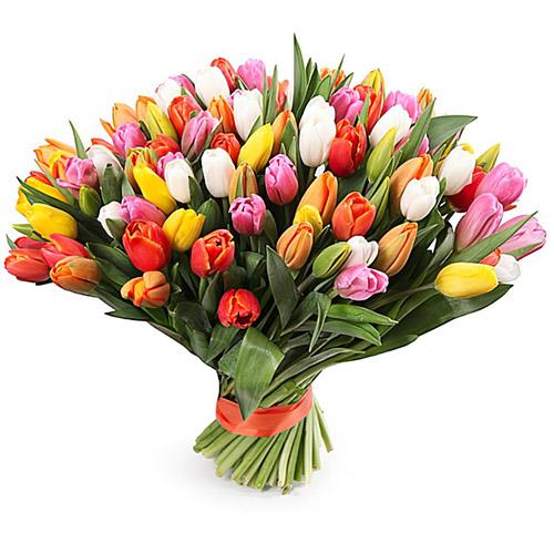 букет 99 разноцветных тюльпанов (красный, розовый, жёлтый, белый)