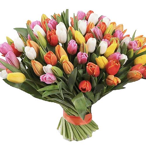 99 разноцветных тюльпанов фото