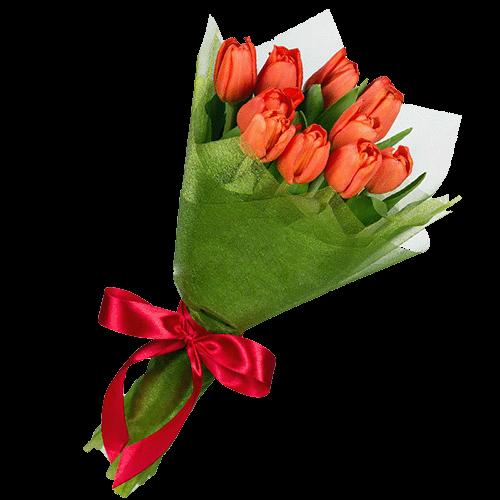 букет 11 красных тюльпанов