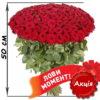 акционный букет 101 красная роза фото