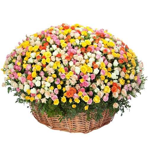301 кустовая разноцветная роза в корзине