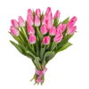букет 25 розовых тюльпанов
