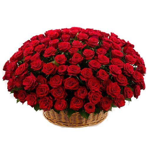 Корзина 101 красная роза фото букета