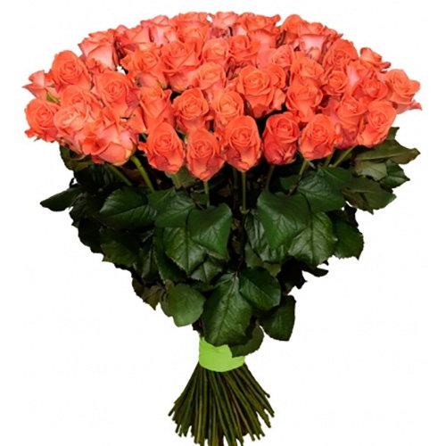101 оранжевая роза фото