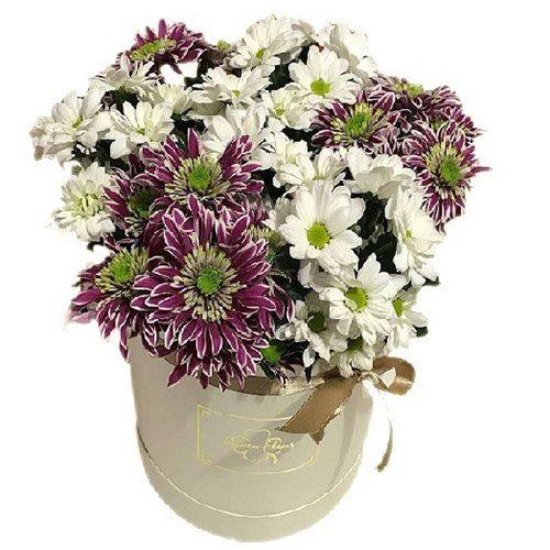 Белые и фиолетовые Хризантемы в шляпной коробке