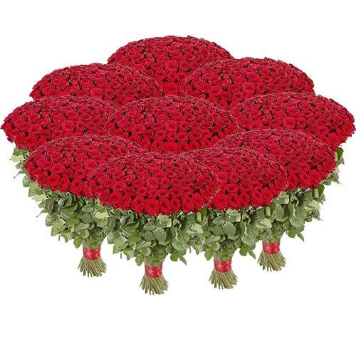 1001 красная роза в Бердянске