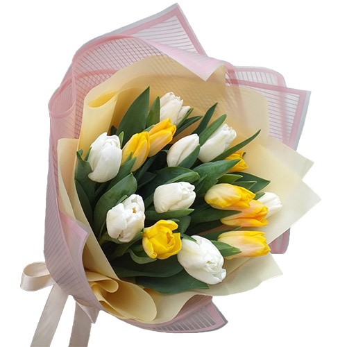 15 бело-жёлтых тюльпанов фото