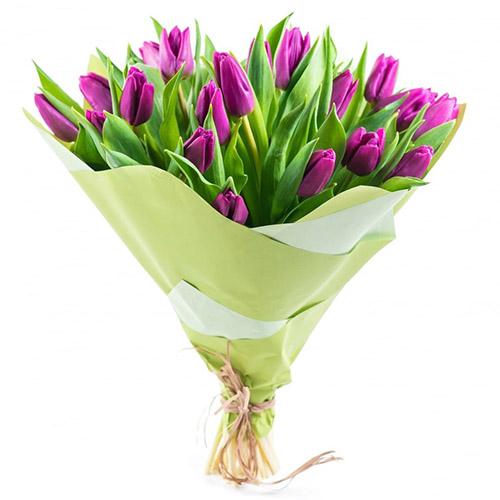 25 пурпурных тюльпанов фото