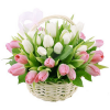 """Корзина """"Первый поцелуй"""" (25 розово-белых тюльпанов)"""