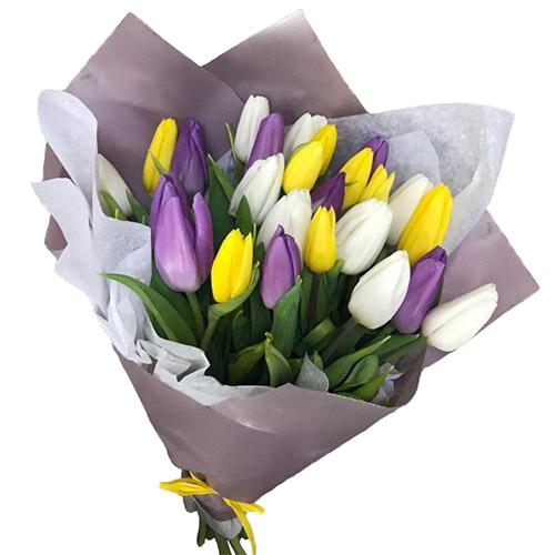 """25 тюльпанов """"Княгиня"""" фото"""