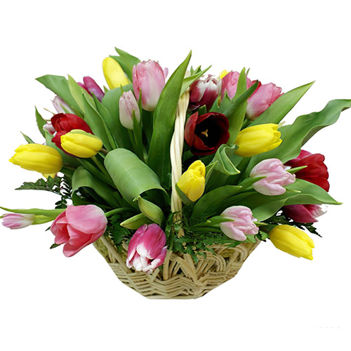 25 тюльпанов микс в корзине фото