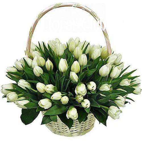 """Сахарная вата"" 51 белый тюльпан в корзине фото"