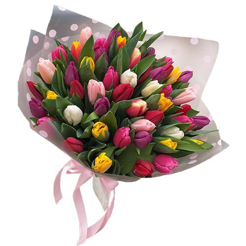 51 тюльпан микс (все цвета) фото