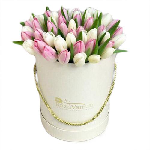 51 бело-розовый тюльпан в шляпной коробке фото