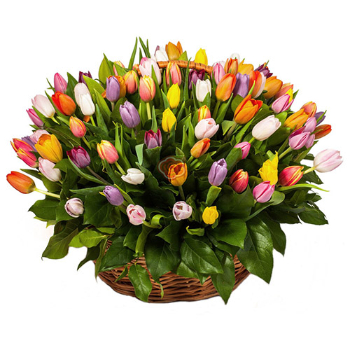 101 тюльпан ассорти в корзине фото