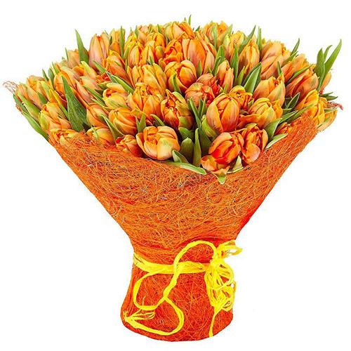 101 пионовидный тюльпан фото