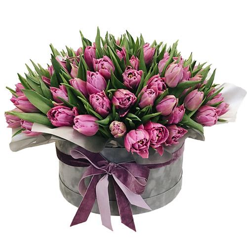 101 пионовидный пурпурный тюльпан в шляпной коробке фото