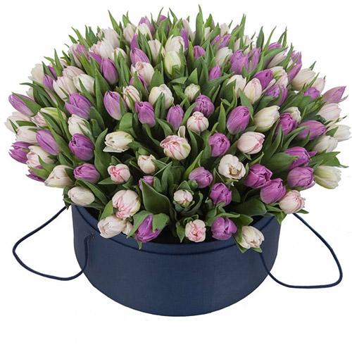 101 тюльпан (2 цвета) в шляпной коробке фото