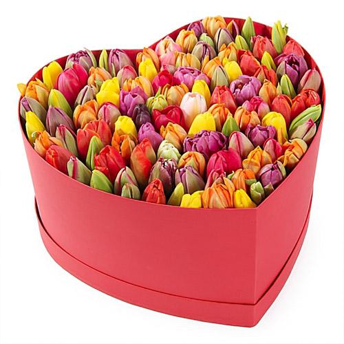 подарок 101 тюльпан ассорти в коробке сердцем