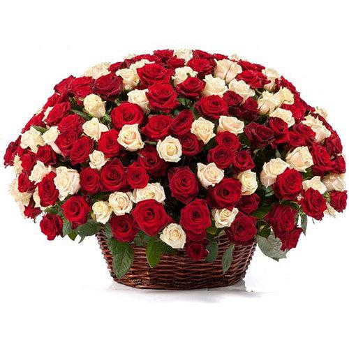 Фото товара 101 роза микс в корзине
