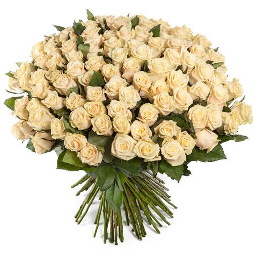 Фото товара 101 кремовая роза