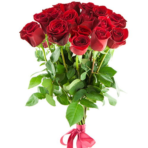 Фото товара 15 импортных роз