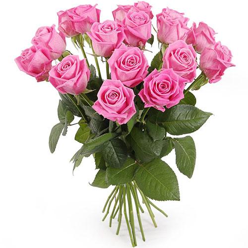"""Фото товара 15 роз """"Аква"""""""