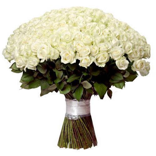 Фото товара 201 белая роза