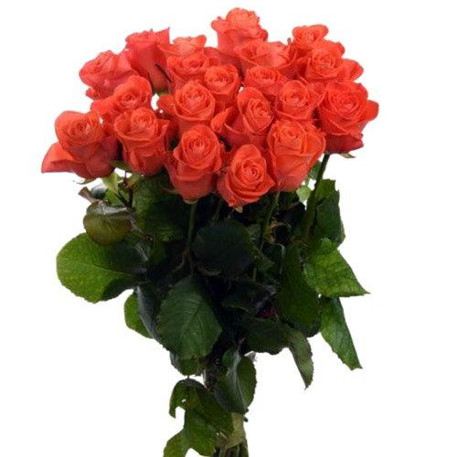 "Фото товара 21 роза ""Вау"""