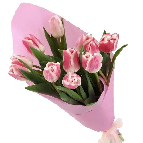 Фото товара 11 розовых тюльпанов