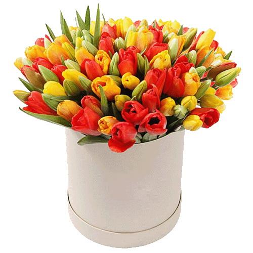 Фото товара 101 тюльпан в коробке