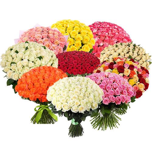 Фото товара Букет 1001 роза разных сортов