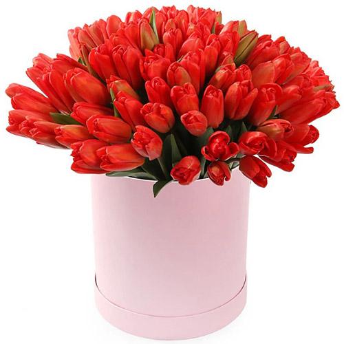 101 красный тюльпан в коробке фото