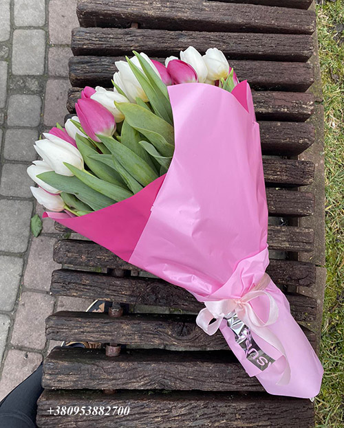 51 бело-розовый тюльпан фото букета
