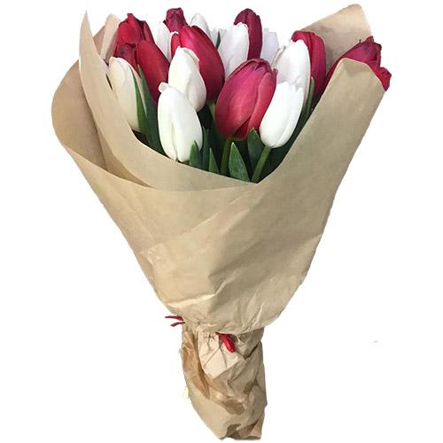 Фото товара 21 червоно-білий тюльпан у крафт