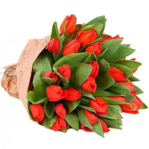 """Фото товара 35 червоних тюльпанів у """"газеті"""""""