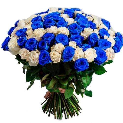 Фото товара 101 біла і синя троянда (фарбована)